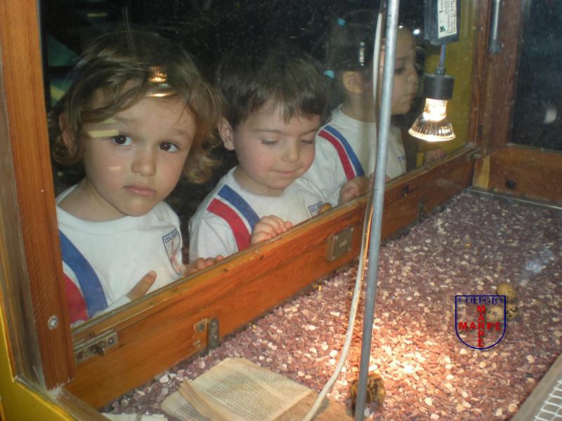3años_museo_elder18